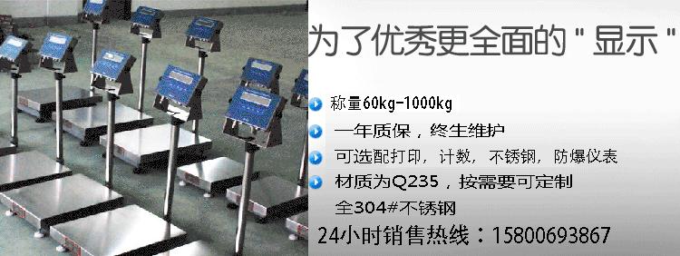 tzh-exib-防爆电子秤